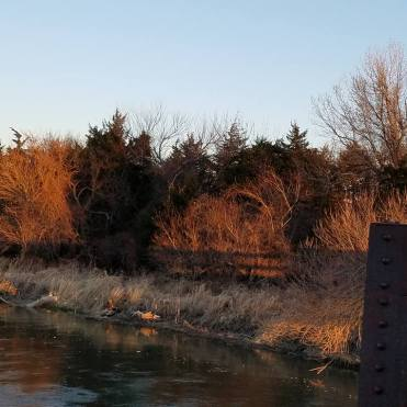 The banks of the Platte